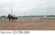 Купить «Три женщины катаются на лошадях внутри загона на ферме», видеоролик № 23356060, снято 27 июля 2016 г. (c) Кекяляйнен Андрей / Фотобанк Лори
