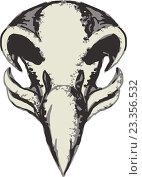 Купить «Череп орла», иллюстрация № 23356532 (c) Aloysius Patrimonio / Фотобанк Лори