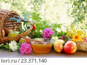 Купить «Яблочный спас. Цветочный мед, яблоки и садовые цветы», фото № 23371140, снято 8 августа 2016 г. (c) ирина реброва / Фотобанк Лори