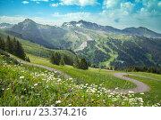 Купить «Альпийские луга, Авориаз, Франция», фото № 23374216, снято 21 июля 2016 г. (c) Юлия Кузнецова / Фотобанк Лори
