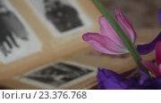Купить «Старые черно-белые фотографии», видеоролик № 23376768, снято 15 мая 2016 г. (c) Яков Чешихин / Фотобанк Лори