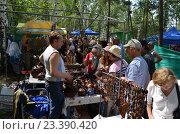 На Бажовском фестивале (2014 год). Редакционное фото, фотограф Токсаров Владимир Андреевич / Фотобанк Лори