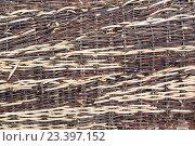 Текстура: часть забора, плетеного из веточек ивы. Стоковое фото, фотограф Михаил Степанов / Фотобанк Лори