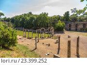 Купить «Вилла Адриана, Италия. Канопа: колонны и скульптуры», фото № 23399252, снято 30 августа 2015 г. (c) Rokhin Valery / Фотобанк Лори