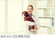Купить «happy doctor with dog at vet clinic», фото № 23404524, снято 19 июля 2015 г. (c) Syda Productions / Фотобанк Лори