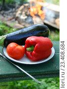 Купить «Красный болгарский перец, томат и крупный баклажан на тарелке. Подготовленные овощи для запекания на костре», эксклюзивное фото № 23408684, снято 25 июня 2016 г. (c) Щеголева Ольга / Фотобанк Лори