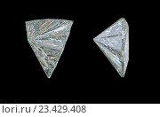 Купить «Драгоценный камень на черном фоне», иллюстрация № 23429408 (c) Арсений Герасименко / Фотобанк Лори