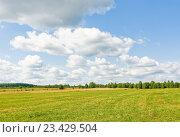 Купить «Сельский пейзаж. Скошенное поле», эксклюзивное фото № 23429504, снято 10 августа 2016 г. (c) Макаров Алексей / Фотобанк Лори