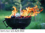 Фритюрница с горящими дровами. Стоковое фото, фотограф Павел / Фотобанк Лори