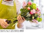 Купить «close up of florist man with flowers and pruner», фото № 23433480, снято 27 марта 2016 г. (c) Syda Productions / Фотобанк Лори