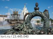 Купить «Отдыхающие люди у фонтана «Каменный цветок» на ВДНХ, Москва», эксклюзивное фото № 23445040, снято 27 августа 2016 г. (c) Давид Мзареулян / Фотобанк Лори