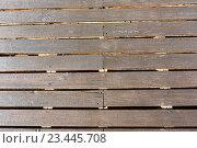 Купить «Wooden decking as background.», фото № 23445708, снято 20 мая 2016 г. (c) Юрий Брыкайло / Фотобанк Лори