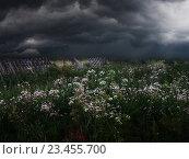 Купить «Туча. Дождь. Шторм. Осень», фото № 23455700, снято 10 июля 2020 г. (c) Дмитрий Третьяков / Фотобанк Лори