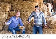Farmers working on a mow. Стоковое фото, фотограф Яков Филимонов / Фотобанк Лори