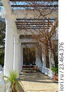 Белые колонны в греческом стиле. Стоковое фото, фотограф Наталья Корзина / Фотобанк Лори