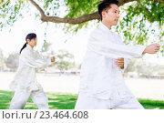 Купить «People practicing thai chi in park», фото № 23464608, снято 19 декабря 2014 г. (c) Sergey Nivens / Фотобанк Лори