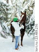 Купить «Красивая девушка и лошадь зимой», фото № 23489216, снято 19 декабря 2015 г. (c) Рустам Шигапов / Фотобанк Лори