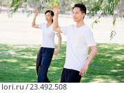 Купить «People practicing thai chi in park», фото № 23492508, снято 19 декабря 2014 г. (c) Sergey Nivens / Фотобанк Лори
