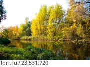 Золотая осень. Стоковое фото, фотограф Мария Тильда / Фотобанк Лори