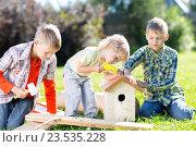 Купить «Три брата работают на лужайке летним днем. Мальчики строят скворечник. Старшие дети обучают младшего брата.», фото № 23535228, снято 3 сентября 2016 г. (c) Оксана Кузьмина / Фотобанк Лори
