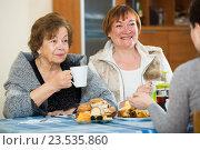 Купить «Young female and mature women drinking tea and talking», фото № 23535860, снято 28 марта 2020 г. (c) Яков Филимонов / Фотобанк Лори