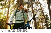 Купить «Female mountain biker drinking water in the forest», видеоролик № 23539292, снято 20 июля 2019 г. (c) Wavebreak Media / Фотобанк Лори