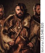 Mad vikings warriors posing in studio on dark background., фото № 23548820, снято 29 августа 2016 г. (c) Andrejs Pidjass / Фотобанк Лори