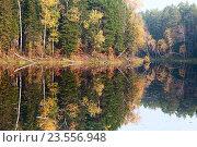 Озеро в осеннем лесу. Стоковое фото, фотограф Владимир Мельников / Фотобанк Лори