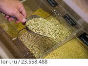 Купить «green buckwheat shop», фото № 23558488, снято 17 августа 2018 г. (c) Яков Филимонов / Фотобанк Лори