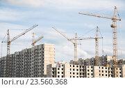 Купить «Строительство панельных жилых домов», эксклюзивное фото № 23560368, снято 11 июля 2016 г. (c) Алёшина Оксана / Фотобанк Лори