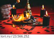 Купить «Ритуал. Ведьма сжигает деньги», фото № 23566252, снято 28 августа 2015 г. (c) Яков Чешихин / Фотобанк Лори