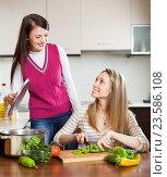 Купить «happy casual women cooking food», фото № 23586108, снято 7 марта 2014 г. (c) Яков Филимонов / Фотобанк Лори