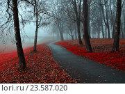 Купить «Autumn landscape of foggy autumn park with red fallen autumn leaves», фото № 23587020, снято 6 ноября 2015 г. (c) Зезелина Марина / Фотобанк Лори