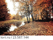Купить «Autumn trees and narrow forest river in cloudy weather. Autumn picturesque landscape in pale colors», фото № 23587144, снято 1 января 2009 г. (c) Зезелина Марина / Фотобанк Лори