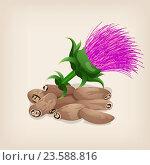 Семена расторопши с цветами. Стоковая иллюстрация, иллюстратор Станислав Хомутовский / Фотобанк Лори