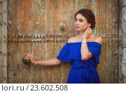 Купить «Портрет красивой девушки», фото № 23602508, снято 31 июля 2016 г. (c) Алексей Назаров / Фотобанк Лори
