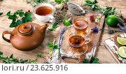 Купить «Herbal tea», фото № 23625916, снято 19 июля 2016 г. (c) Tatjana Baibakova / Фотобанк Лори