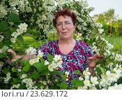 Купить «Женщина 60 лет стоит в ветвях цветущей яблони», эксклюзивное фото № 23629172, снято 18 июня 2016 г. (c) Вячеслав Палес / Фотобанк Лори