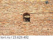 Купить «Фрагмент крепостной стены Коломенского кремля», фото № 23629492, снято 20 апреля 2013 г. (c) Алёшина Оксана / Фотобанк Лори