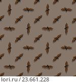 Купить «Бесшовный узор с летучими мышами на коричневом фоне», иллюстрация № 23661228 (c) Анастасия Улитко / Фотобанк Лори