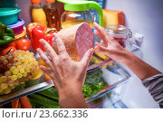 Купить «Human hands reaching for food at night in the open refrigerator», фото № 23662336, снято 30 сентября 2016 г. (c) Андрей Армягов / Фотобанк Лори
