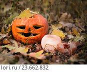 Купить «Хэллоуин», фото № 23662832, снято 26 июня 2019 г. (c) Светлана Кузнецова / Фотобанк Лори