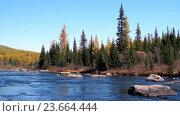 Купить «River Multa near lake Lower Multinskoe in Altai», видеоролик № 23664444, снято 24 сентября 2016 г. (c) Serg Zastavkin / Фотобанк Лори