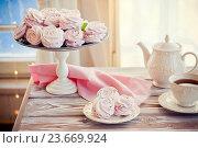 Купить «Чашка чая и зефир на тарелке», фото № 23669924, снято 7 января 2016 г. (c) Вероника Галкина / Фотобанк Лори