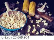 Купить «Попкорн с солью», фото № 23669964, снято 6 марта 2016 г. (c) Вероника Галкина / Фотобанк Лори