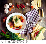 Купить «Лазанья с перцем чили», фото № 23670016, снято 24 февраля 2016 г. (c) Вероника Галкина / Фотобанк Лори