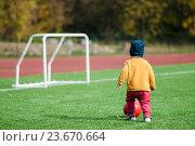 Маленький ребёнок. играет в футбол на футбольном поле. Стоковое фото, фотограф Игорь Низов / Фотобанк Лори