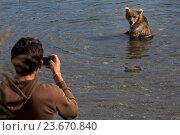 Купить «Турист фотографирует дикого бурого медведя, который ловит рыбу в естественной среде обитания во время нереста лососевых, Камчатский край», фото № 23670840, снято 3 сентября 2016 г. (c) Николай Винокуров / Фотобанк Лори