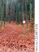 Купить «No vehicles traffic sign in forest», фото № 23687616, снято 17 ноября 2019 г. (c) age Fotostock / Фотобанк Лори