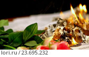 Купить «Sheet music are burning on background of girl playing violin. 4k.», видеоролик № 23695232, снято 9 сентября 2016 г. (c) Gennadiy Poznyakov / Фотобанк Лори